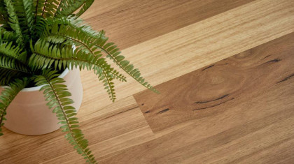 Native Collection Flooring