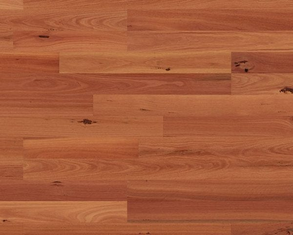 Quick-Step 2 strip Sydney Blue Gum