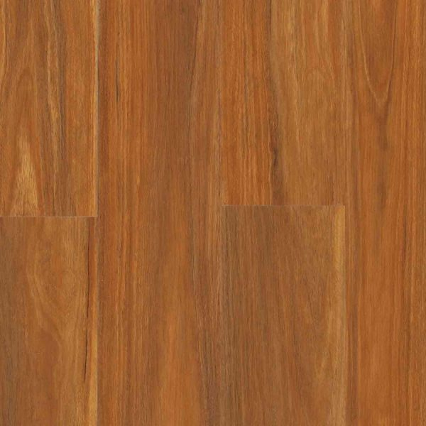AquaLife Snowy River Spotted Gum