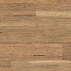 Korlok Weathered Spotted Gum