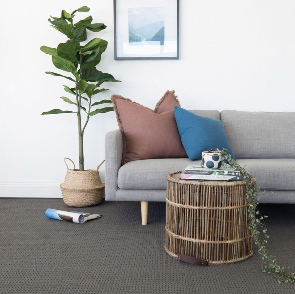 indoor plants and protecting your flooring and carpet with pots