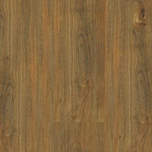 Integral Coastal Spotted Gum