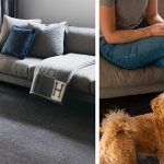 Carpet and pets. How to make it work
